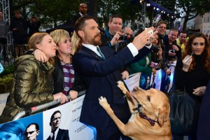Tom Hardy and fans at the U.K. film premiere of Legend held at Odeon cinema, Leicester Square, London on September 3, 2015.