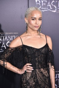 Zoe Kravitz Warner Bros. Fantastic Beasts and Where to Find Them World Premiere New York