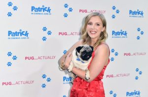Beattie Edmondson and Harley the PugPatrick UK Premiere London