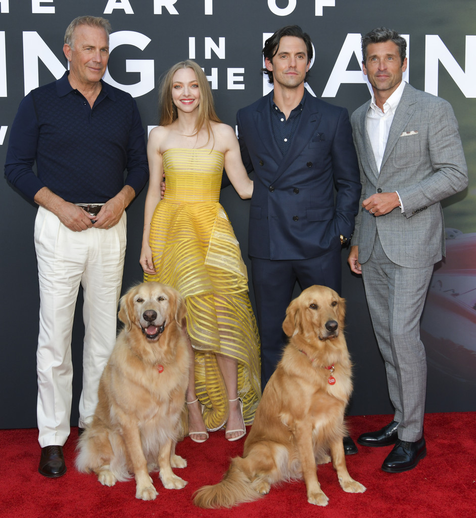 Kevin Costner, Amanda Seyfried, Milo Ventimiglia and Patrick Dempsey The Art of Racing in the Rain Los Angeles Premiere Arrivals