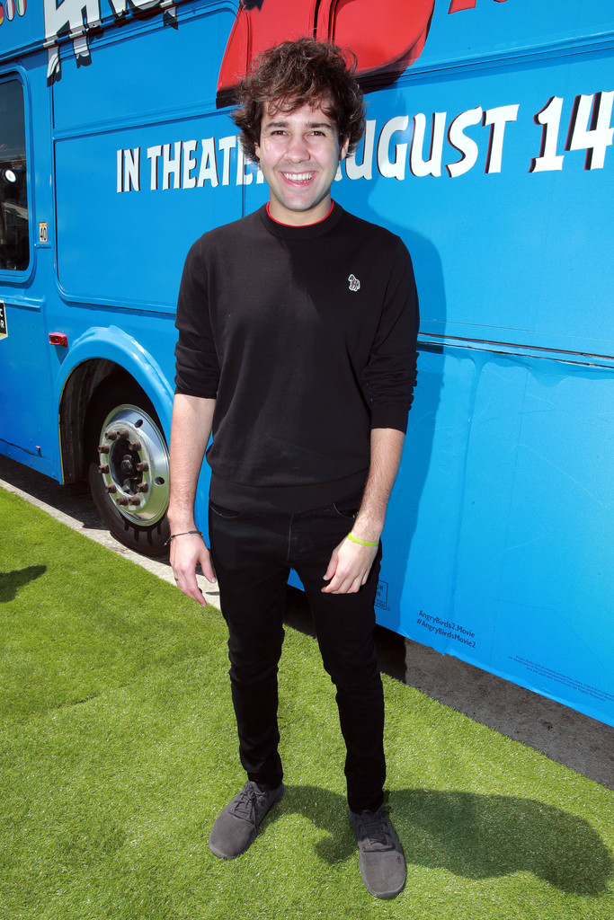David Dobrik The Angry Birds Movie 2 Los Angeles Premiere